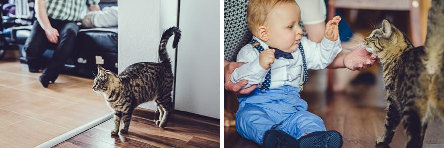 Dziecko bawiące się z kotem