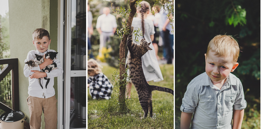 Trzy zdjęcia, chłopiec z kotami