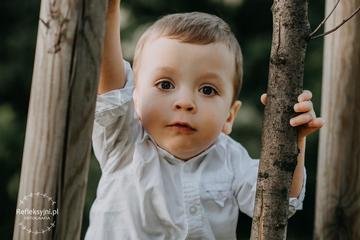 Dziecko przy drzewie
