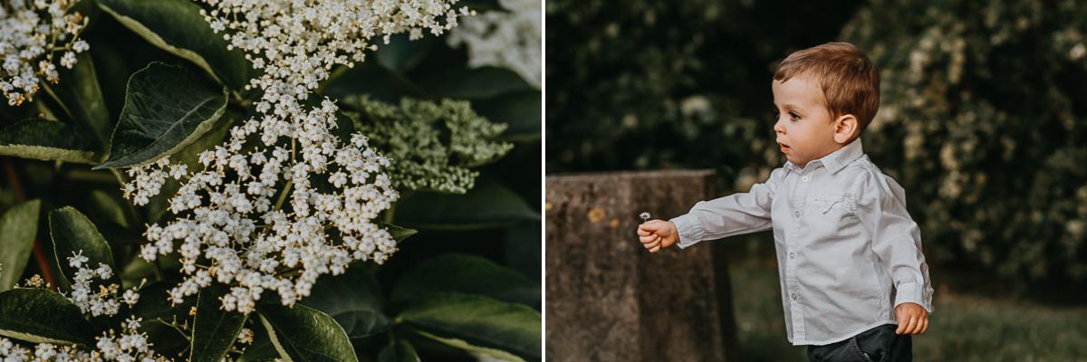 Dziecko trzyma kwiatek