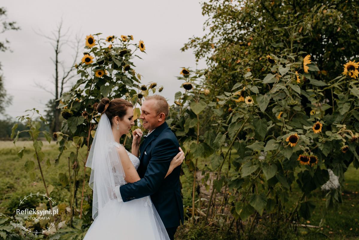 Sesja ślubna plenerowa słonecznkiki