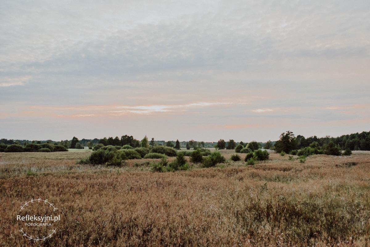 Park Kampinoski